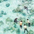 Diver take children to snorkeling, see under sea life