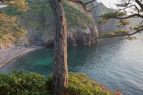 紫津浦湾の裏側に位置する船越ビーチ(撮影/堀口和重)