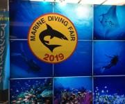 次の記事: 今年も開催☆ダイバーの祭典「マリンダイビングフェア2019」