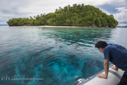 ボートの上から見下ろせば海底が難なく透き通って見えるラジャアンパットの海