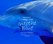 次の記事: 越智隆治カメラマンのHP「INTO THE BLUE」リニュ
