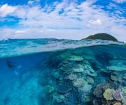 次の記事: 沖縄の原風景が広がる離島。伊平屋島のダイビングで見たサンゴは