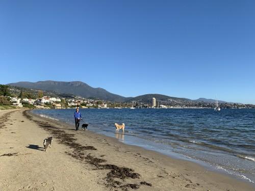 普通の街のビーチです!(撮影/村井智臣)