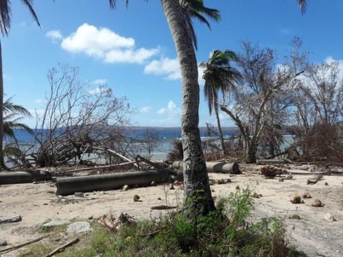 台風直後はラウラウビーチの駐車場なども破壊され使用不可な状態に