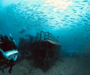 次の記事: 【360度動画あり】ブルネイってどこ!?直行便で約6時間、海