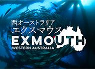 西オーストラリア エクスマウス