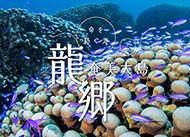 奄美大島・龍郷~命を紡ぐ海~