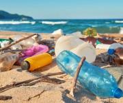 前の記事: 【アンケート】海洋ゴミ問題について、あなたの意見を聞かせてく