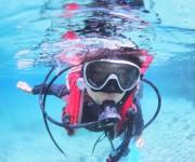 次の記事: 【子供のダイビング体験記】むらいさちさんのお子さん(10歳)