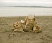 前の記事: 日本初の取り組み!神奈川県葉山・森戸海岸がコロナと共にプラス
