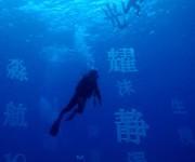 次の記事: 水中の芸術美を見に行こう!「第18回 水中展覧会 アクアート