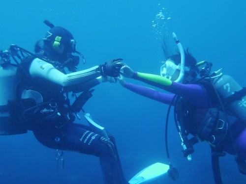 体験ダイビングは10歳から参加可能