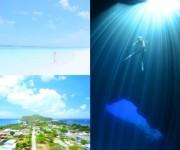 次の記事: 「#はじめてロタ」アンケート!ロタ島でのダイビング旅について