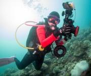 前の記事: 【3】ダイバーの持っている情報を未来予測に使いたい!〜過去の
