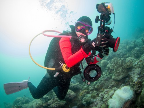 Scuba diver doing underwater photography in Anilao Philippines