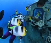 次の記事: 【グアム】初めての海外ダイビングにグアムをオススメする6つの