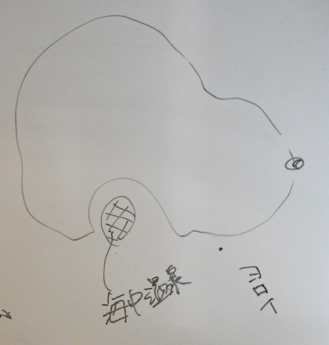 「海中温泉」と書いてある場所が御釜湾