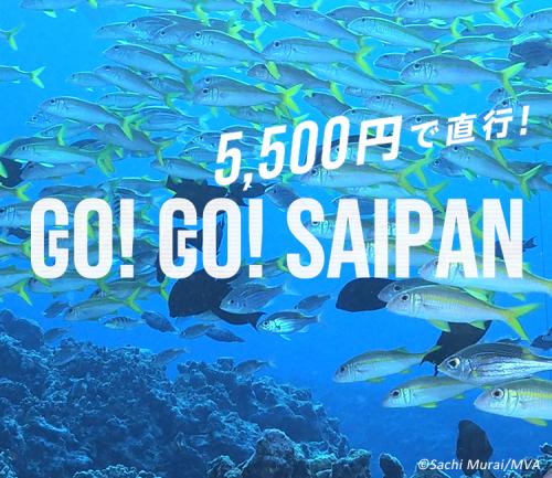 gogo_SP-500x433