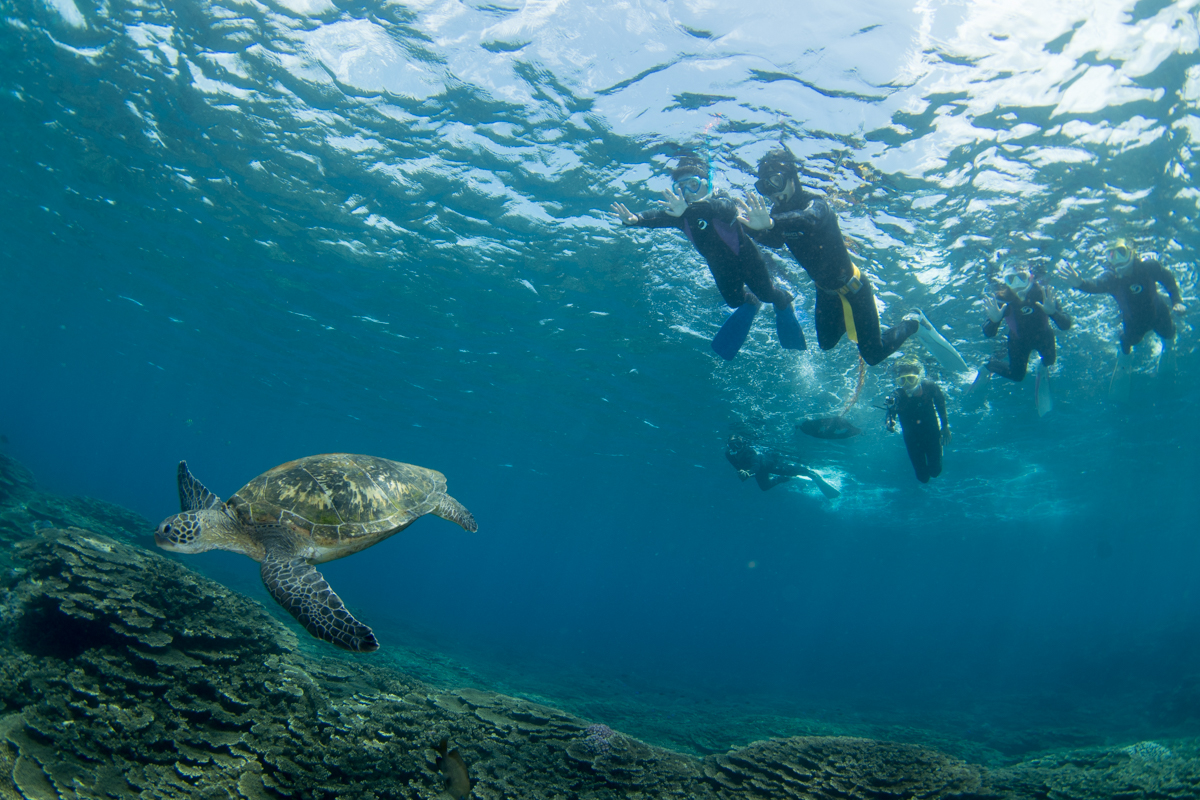 子どもと一緒にシュノーケリングがしたい!未就学児と美しい水中世界を見るのは夢物語?