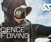 次の記事: 自宅でダイビングプロレベルの知識が学べる!SSIのデジタル教