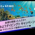 SSI始めようダイビング!!キャンペーン
