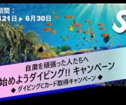次の記事: 【6/30〆切】6万円相当のダイビング器材が当たるチャンス!