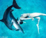 前の記事: 生物多様性を持続していくために・・