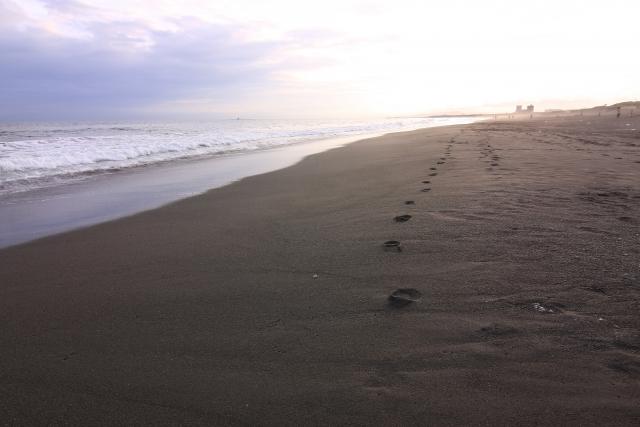 【環境記事まとめ】6月は環境月間!大好きな海・自然のために何ができるか考えよう