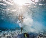 前の記事: 売上の一部が海洋保護活動へと寄付される、画期的な水中フォトウ