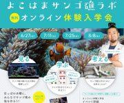 """前の記事: 小学生向け!""""水槽にサンゴの海を作る""""体験型 環境教育プログ"""