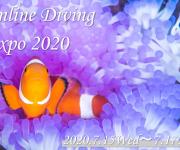 次の記事: 史上初のOnline Diving Expoを開催!!