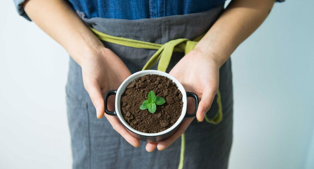 ベランダ菜園のお供に!手作りコンポストでゼロ・ウェイスト生活、始めませんか?