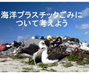 次の記事: 「海の日」は海洋プラスチックごみについて考える
