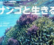 """前の記事: 貴重な""""サンゴのけんか""""の撮影に初成功! 中村征夫の写真絵本"""