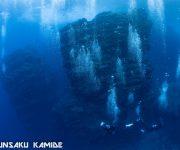 次の記事: 世界自然遺産登録目前!?沖縄本島北部「やんばる」の海の知られ