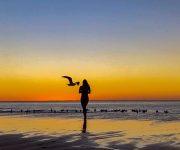 前の記事: 各国に学ぶサスティナブルな暮らし〜オーストラリア編③〜