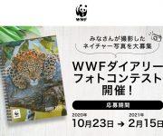次の記事: 【絶賛開催中】第一回 WWFダイアリーフォトコンテスト
