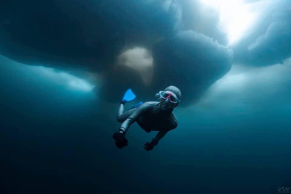 「素潜りのベストシーズンとは?」〜知られざる魅惑の世界、冬の海〜
