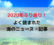 次の記事: 【2020年振り返り】2020年にたくさん読まれたダイビング