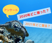 次の記事: 【アンケート】2020年一番潜ったところは?2021年潜りた
