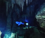 次の記事: 水中鍾乳洞映像BY広部俊明映像チームが先進映像のアワードでグ