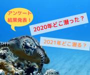 次の記事: 【結果発表】2020年、2021年ダイビングアンケート!