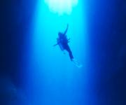 前の記事: 「ダイビング×瞑想×フィットネス」新感覚のダイビングプログラ