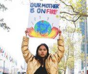 前の記事: 環境問題に立ち向かう5人の若き英雄たち