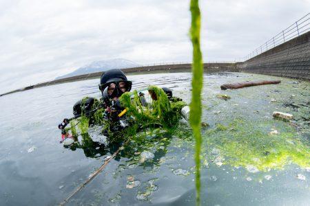 半水面を狙うと海藻だらけになることも…。