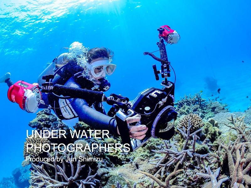 水中写真家・清水淳さんが、「第25回水中写真教室作品展」開催