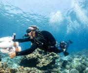 前の記事: 水中スクーターのホワイトシャークシリーズにパワーアップした新