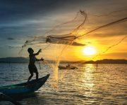 前の記事: 持続可能な漁業を目指すサステナブル・シーフードとは?