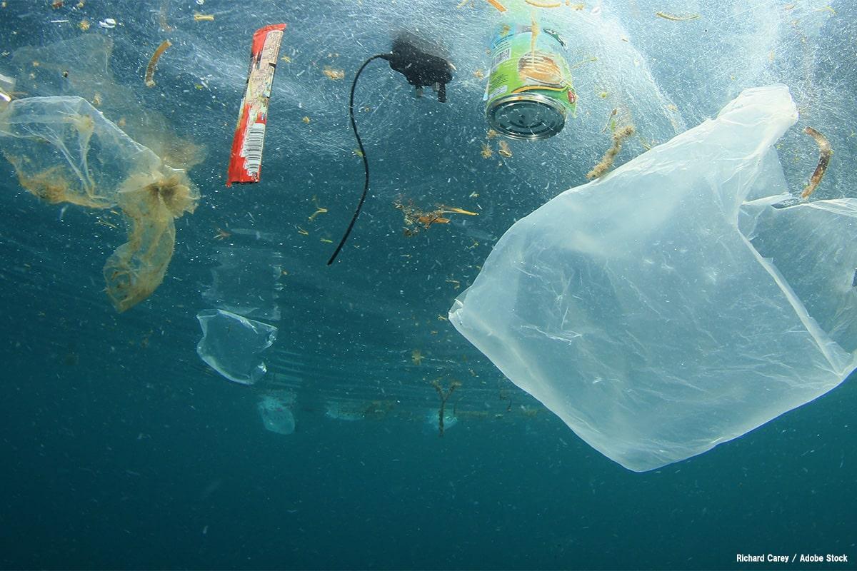 【プラスチックごみ問題入門】海洋ごみに対する世界の動き
