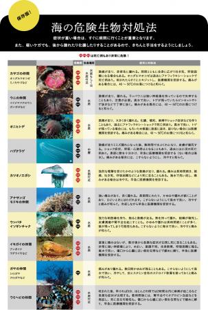 海の危険生物との付き合い DANJAPAN